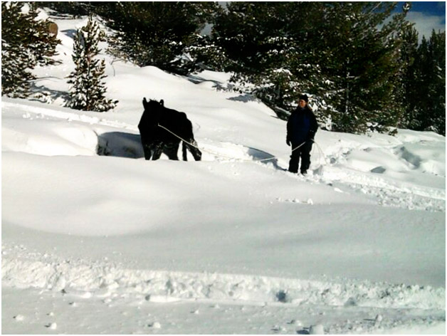 RealRanchers Jim and Timmery Hellyer rescue a stray cow from the mountains in Wyoming