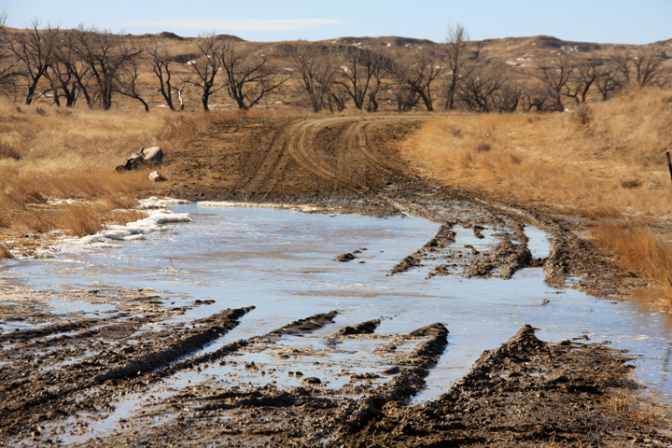 Winter flooding in Niobrara County on the Greasewood Road. The unusual flooding caused problems for ranchers feeding and caring for livestock.