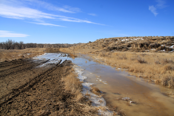 Niobrara County flooding has caused winter woes for ranchers trying to feed and care for livestock.