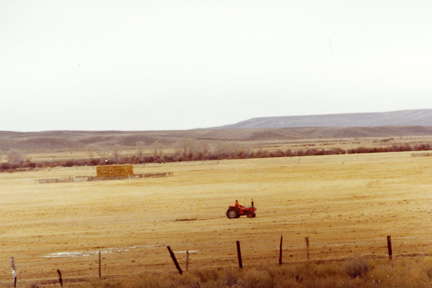 Draging pastures in Wyoming. This breaks up manure to be more available for plant life.