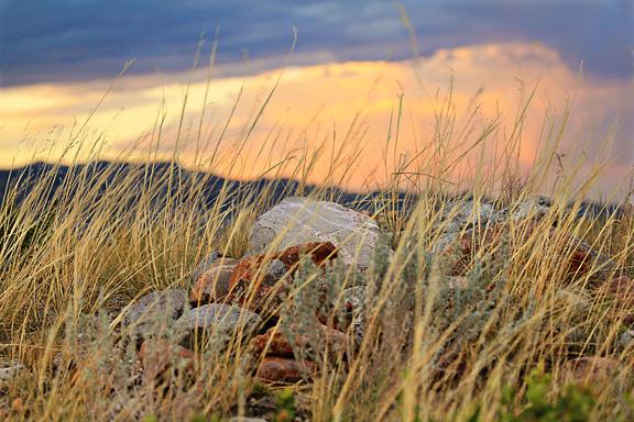 Wild Lands Order opposed in Wyoming