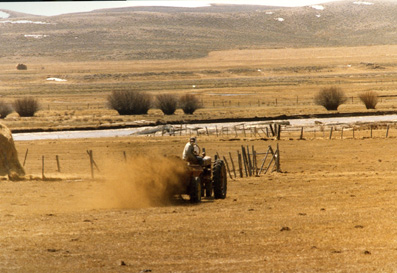 Pinedale ranchers spread manure on their land as a natural fertilizer