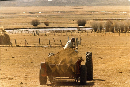 Manure spreaders are used to distribute manure as a fertilizer on pasture and hay land in Sublette County, Wyo.