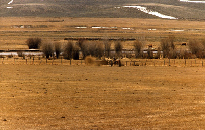 The Sommers Ranch spreads manure from their corrals on their pasture and hay land to fertilize their grasses.