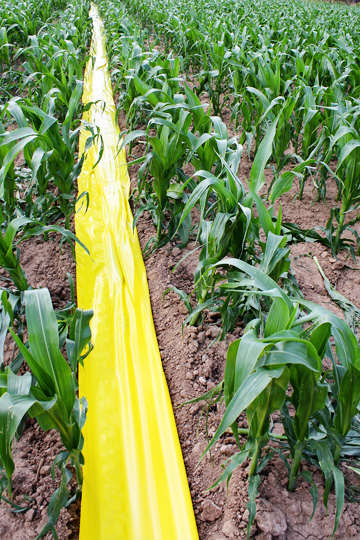 Farmers in Wyoming explain the use of plastic ditch in their irrigation systems