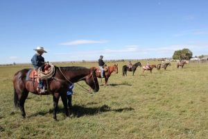 Riders on horseback at the Lucky 7 Angus on the Wyoming Angus Tour