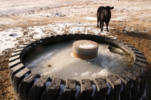 Providing water for livestock in Wyoming