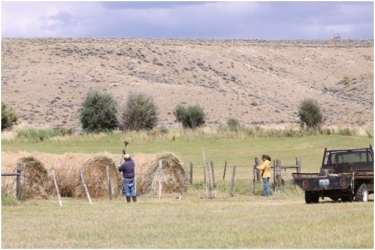 Rancher Albert Sommers fixes fence on his ranch in the Green River Valley of Wyoming. Fencing on ranching operations is a constant job.