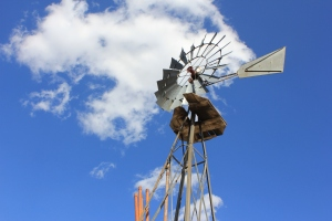 An old windmill that is on the Harshbarger ranch