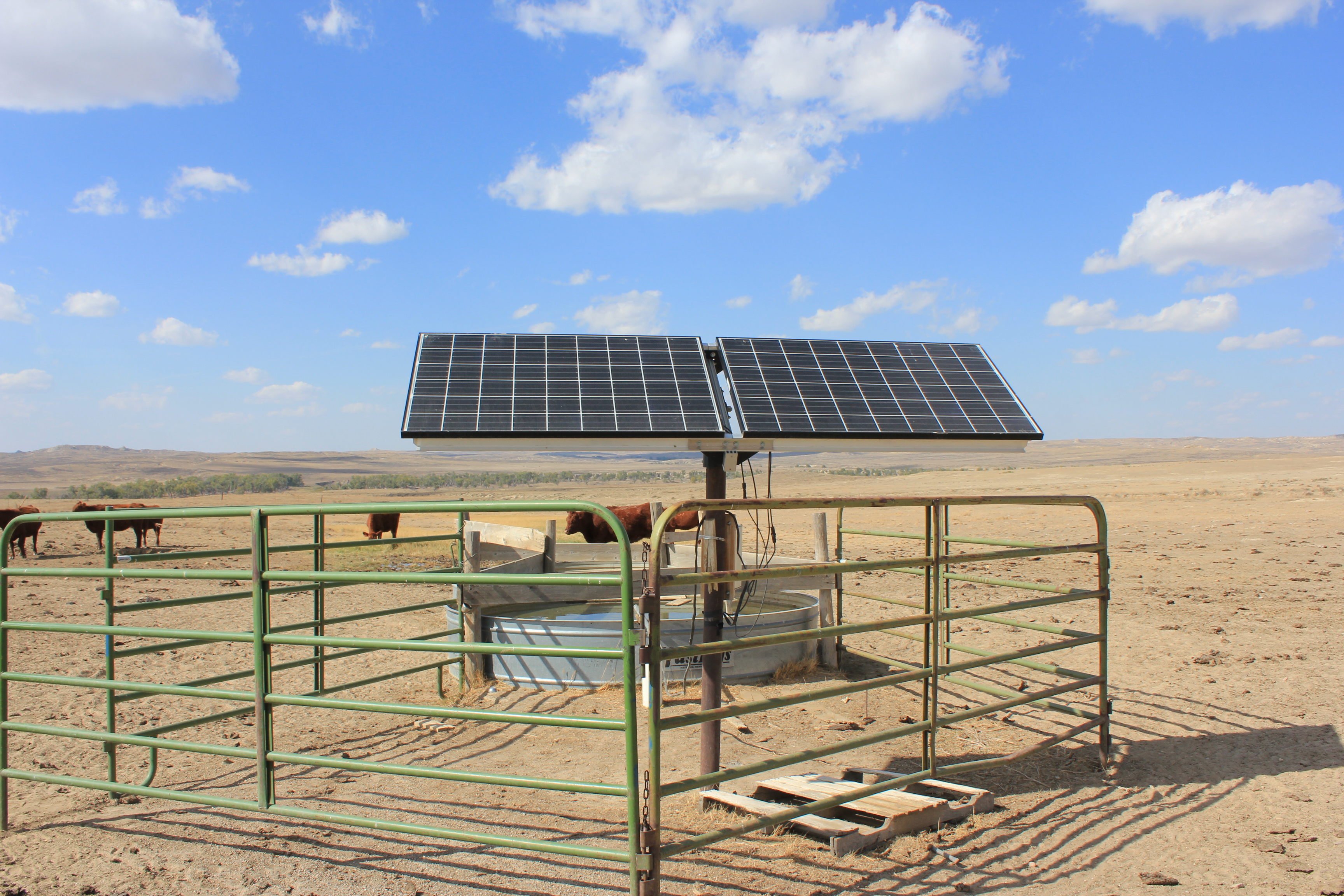 Solar panels are used to pump water for the cattle on Bob and Jean ...
