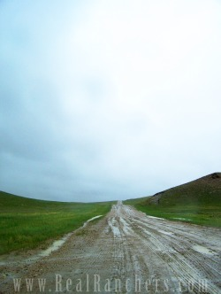 Rural roads are often upaved in Wyoming, so long dirt roads are the norm in country settings.
