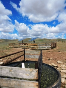 Dennis Sun of the Sun Ranch outside Casper Wyoming works to improve sage grouse habitat on his ranch through the Natural Resources Conservation Service Sage Grouse Initiative
