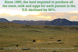 American agriculture uses 66% less land than in 1960