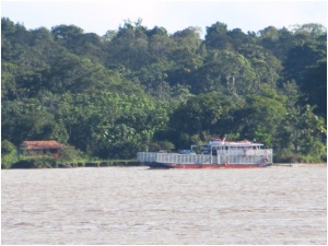 Barge to carry supplies and cattle on the Amazon River near Parintin, Brazil