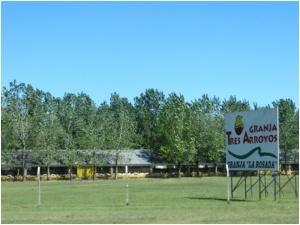 Chicken farm near Buenos Aires, Argentina
