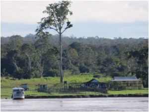 Estancia along the Amazon River near Parintin, Brazil