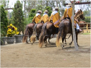 Estancia that raised Peruvian Paso horses