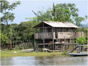House along Amazon River near Santarem, Brazil