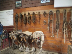 Tack room at ranch near Puerto Montt, Chile