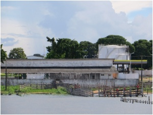 Where they unload the cattle from the barges to put on trucks at Santarem, Brazil