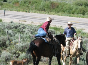 """Right before this photo was taken, I bailed off my uncle's palomino """"Andy"""" to grab a calf by the back leg before he crawled through the fence. Mack McCormick came to my aid as I scrambled with the calf."""