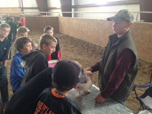 Austin Pedersen teaches students about chickens at the 2014 Laramie Peak CattleWomen Ag Expo.