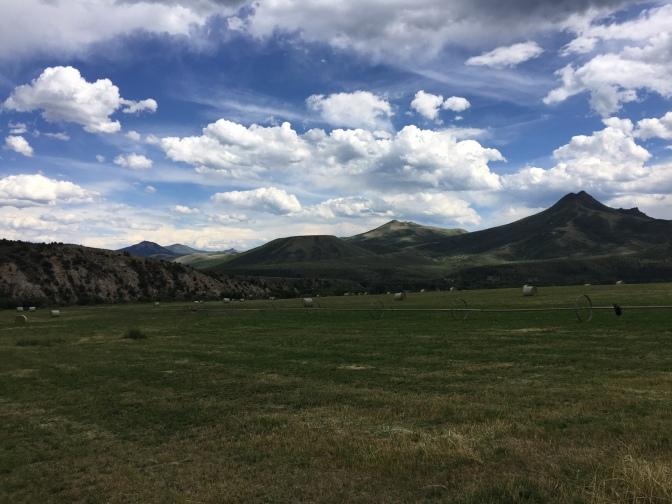 week 8 scenery