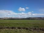 Rangeland Interns-Perry Cattle Company is Keeping Jedidiah Hewlett Busy